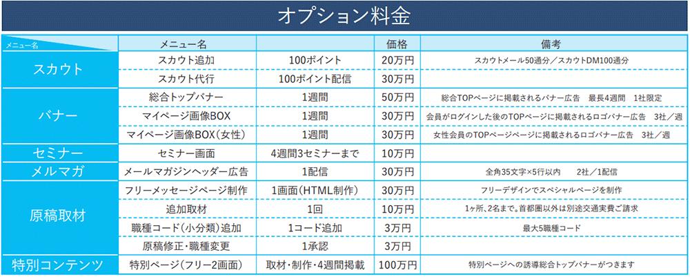 日経キャリアNETのオプション料金